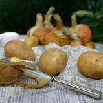 Jak zapobiec ciemnieniu obranych i startych ziemniaków?